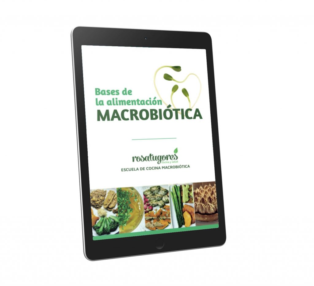 Bases Macrobiotica PDF