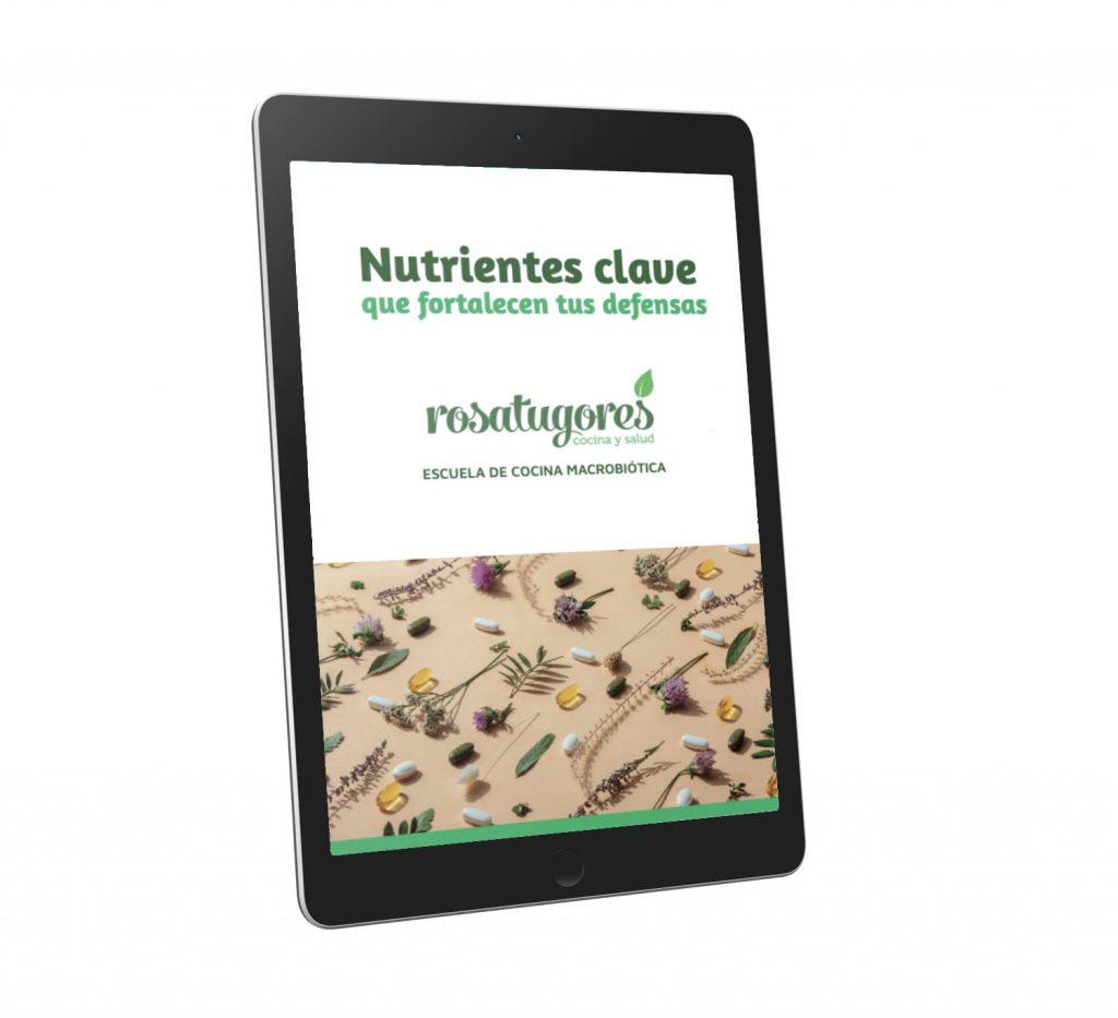Nutrientes Clave PDF
