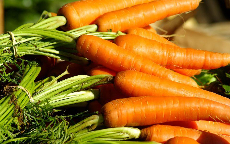 Zanahorias Estofadas